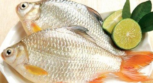 Mẹo giữ cá tươi 3 ngày nếu không có tủ lạnh cực hay