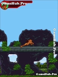 Tải game Adventures of Simba 2 - Khám phá rừng rậm Java