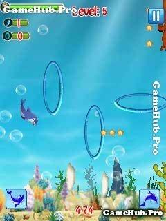 Tải game The Dolphin Stunt - Diễn viên cá Heo cho Java