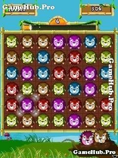 Tải Game Jungle Puzzle Blitz - Bí Ẩn Rừng Xanh Crack