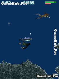 Tải game Hungry Shark - Cá Mập Ăn Thịt Crack Cho Java