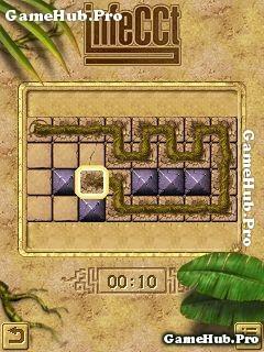 Tải game Infecct - Trí tuệ trồng hoa cực khó cho Java