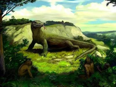 10 loài động vật huyền thoại có thật ít ai biết đến
