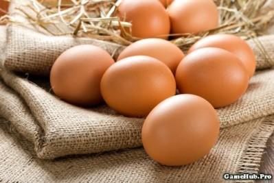 Những mẹo phân biệt trứng thật hay trứng giả cực nhanh