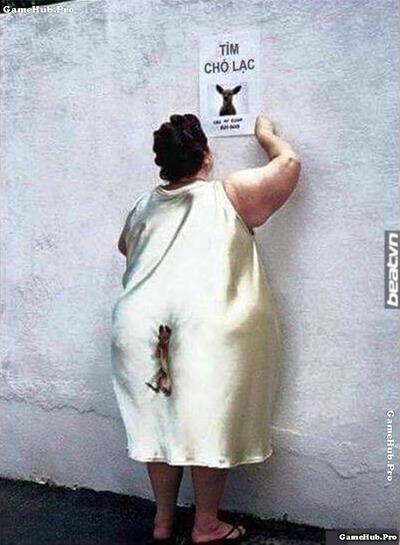 Những hình ảnh báo đạo đầy sự sai trái cực hài hước