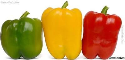 Những loại ớt nào cay nhất trên thế giới hiện nay ?