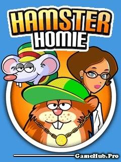 Tải Game Hamster Homie - Trí Tuệ Vui Nhộn Cho Java